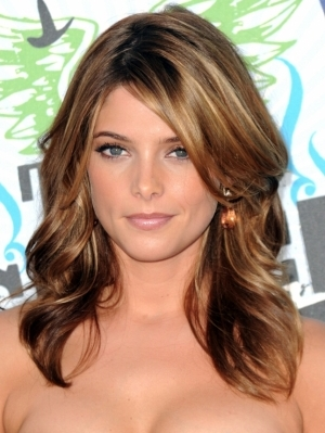 Highlights ideas for brunette  hair