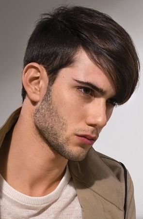 Superb Men39S Hairstyles For 2015 Haircuts And Hairstyles For 2017 Hair Short Hairstyles Gunalazisus