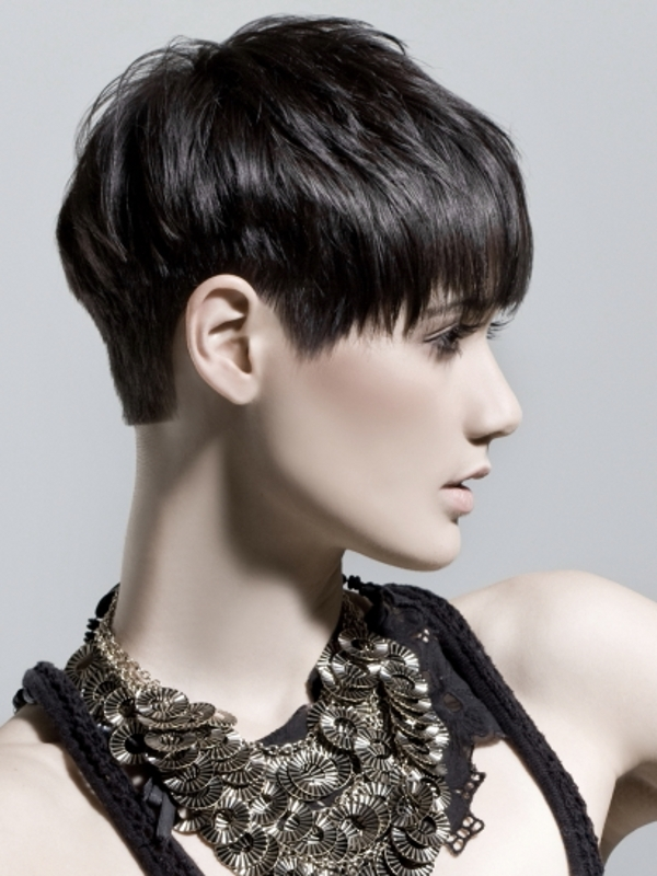 Super Short Hairstyles Haircuts And Hairstyles For 2017 Hair Colors Short Hairstyles Gunalazisus