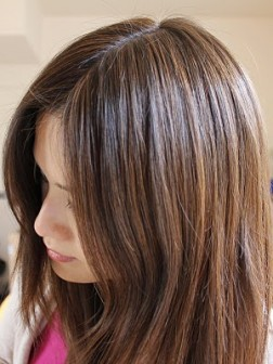 dark brown highlights black hair