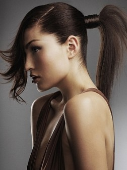 2013 Ponytail hairstyles