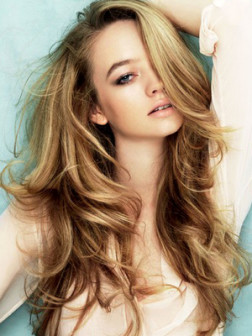 embedded_honey-blonde-hair-color